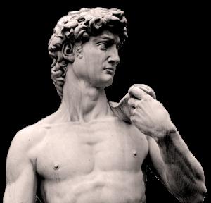 Top half of Michelangelo's David